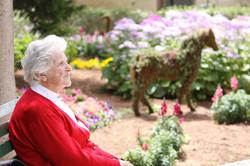 Elderly-Woman-Sitting-In-The-Sun-7561616