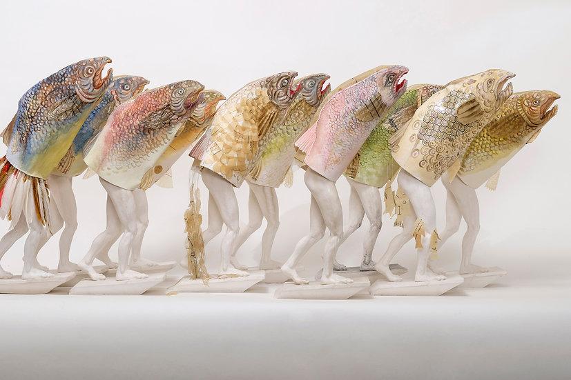 School of Antrofish