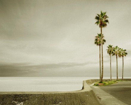 Five Palms, Nomozaki, Japan, 2010