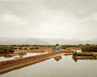 Blue Tarp, Vietnam, 2011