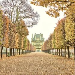 Tuileries Garden, Paris, France 2018