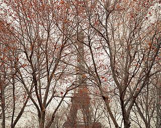 Eiffel Tower 01, Paris, France, 2010