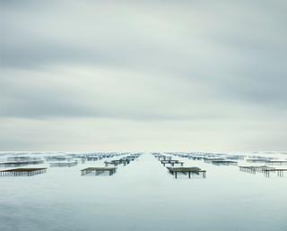 Oyster Racks, Meze, France