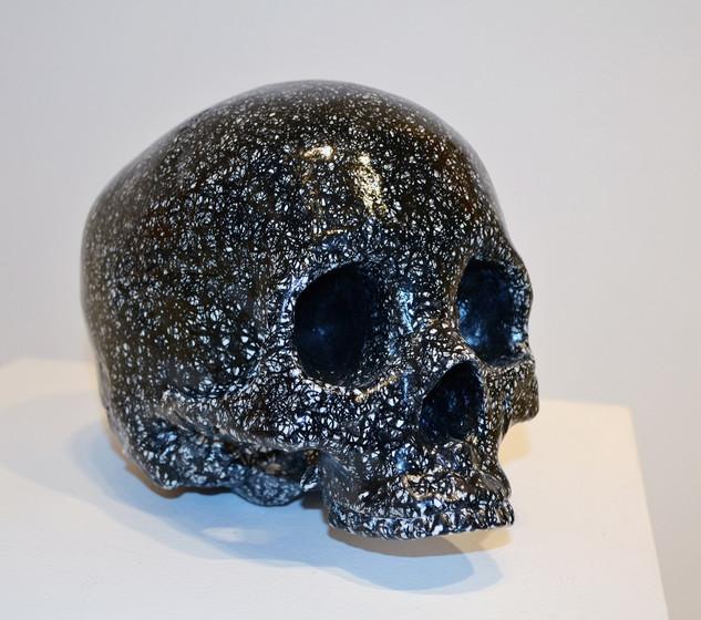 Study 300 ft Idiosyncratic Skull