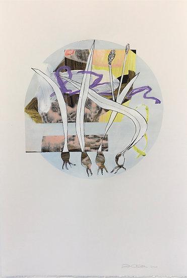 Untitled Tondos 3
