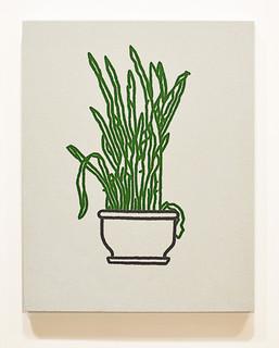 Julien's Plant