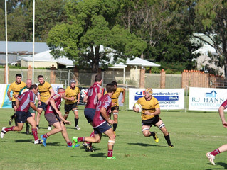 Close win against Toowoomba Bears
