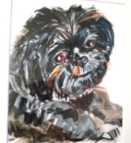 Watercolor: Pet Portraits
