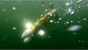 Sonda Towfish ECO I em operação
