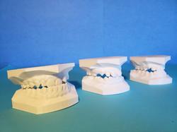 Biomodelos odontológicos