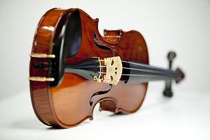 Violin web.jpg