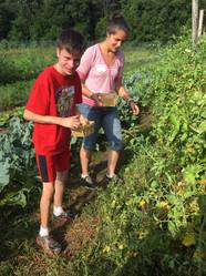 GR Hayden Picking tomatoes.jpg