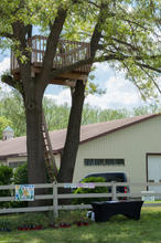 Climbing the tree house is a goal for some of our participants