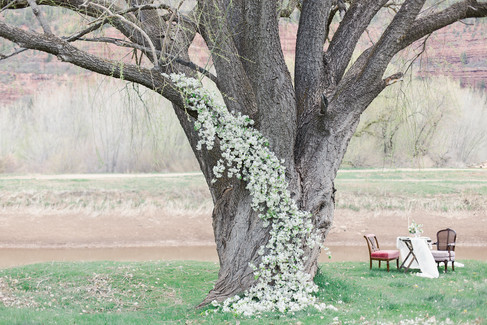 Ceremony Flower Backdrop