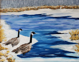 Canadan Geese