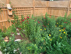 Fenced yard with yellow and red flowering plants, a stone path and bird house mounted on the fence