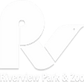Riverview Part and Zoo, white font, logo white P with stylized bird to resemble R and V