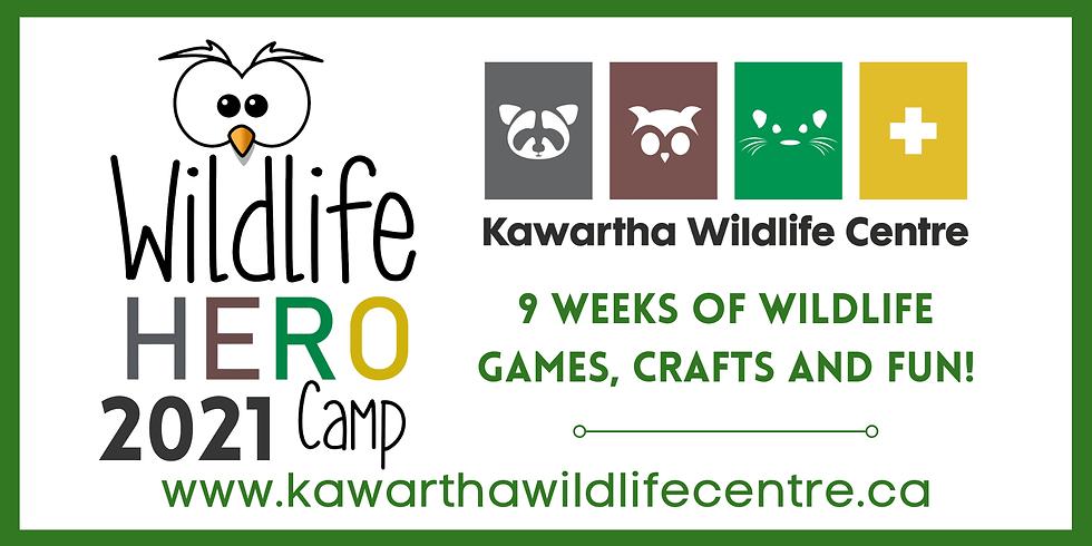 Wildlife Hero Summer Camp: Week 5