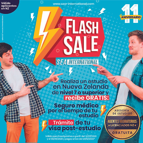 flash sale-01.jpg