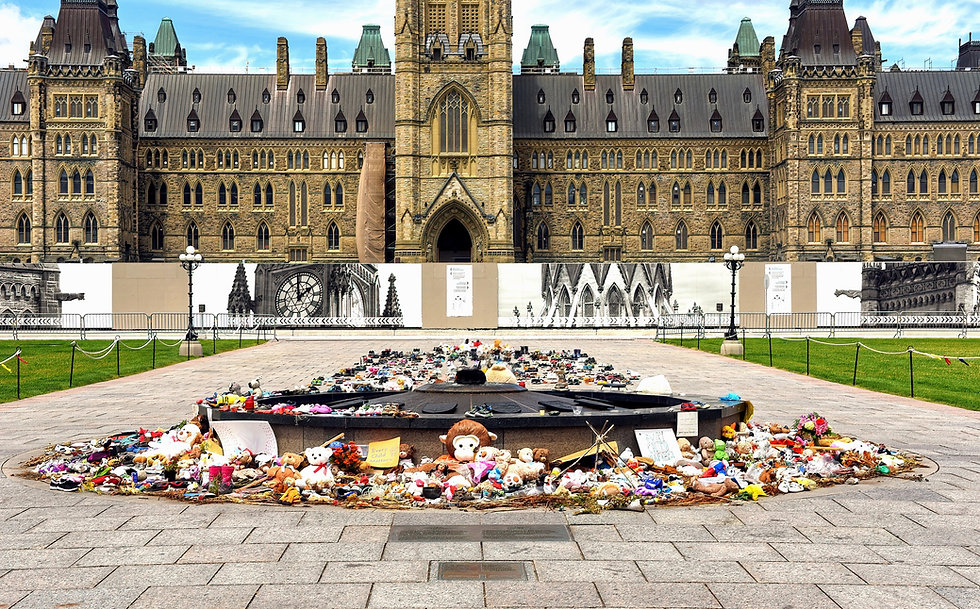 parliament building native protest_edited.jpg