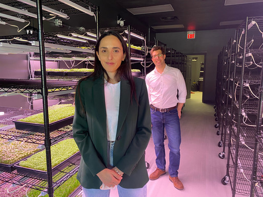 Urban indoor vertical farm sprouts in downtown Kingsville