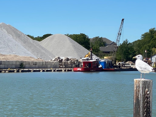 Town moves to expropriate section of port lands