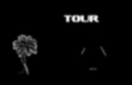 Logo drafts.png