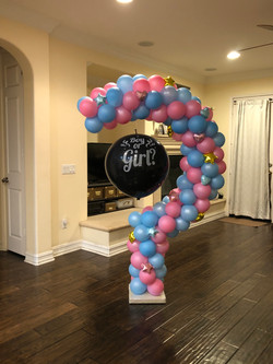 Gender Reveal Question Mark 6' tall  IMG