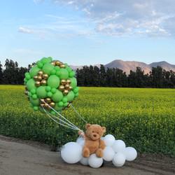 Hot Air Balloon with Bear