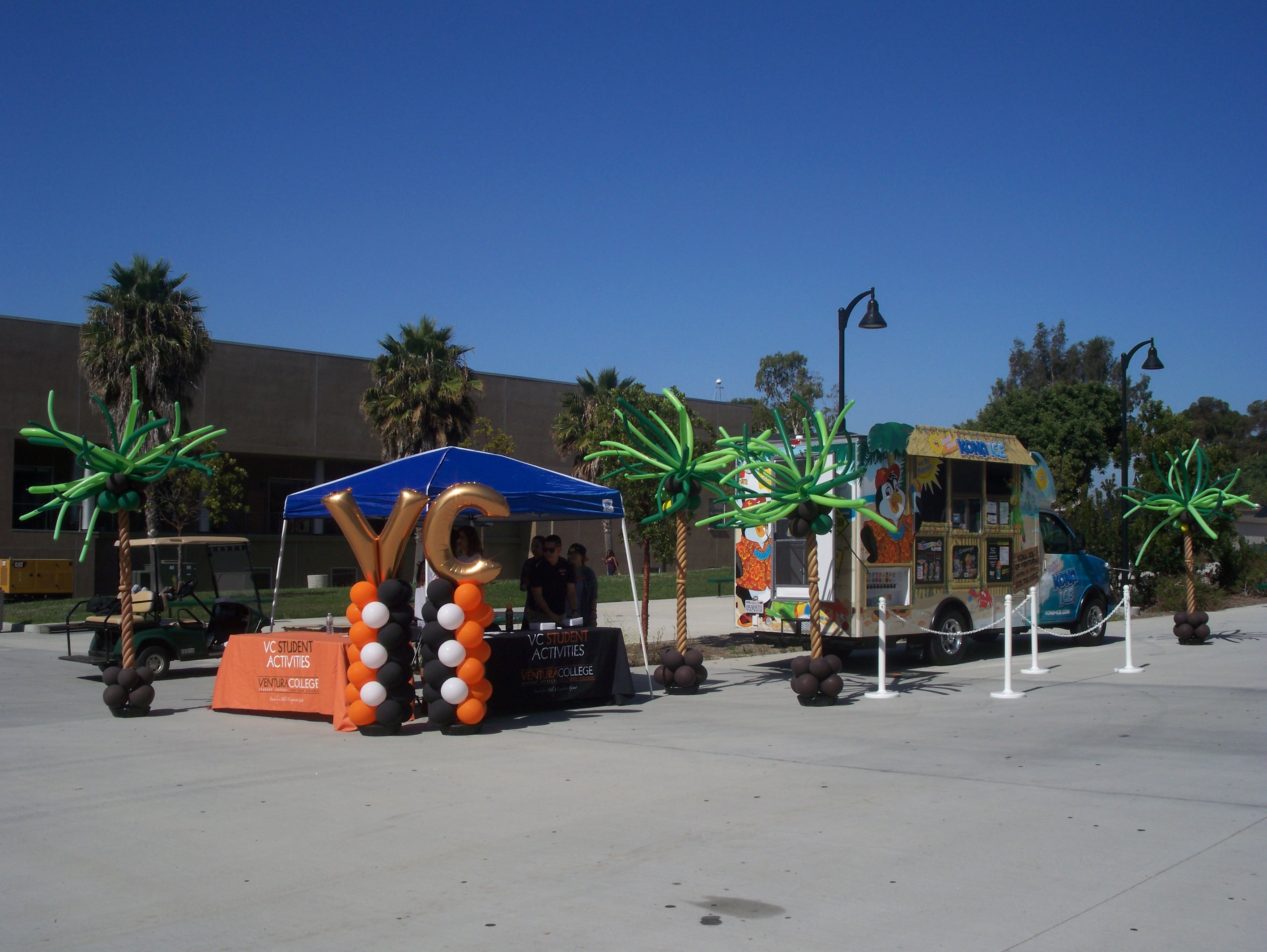 Palm Trees at Ventura College