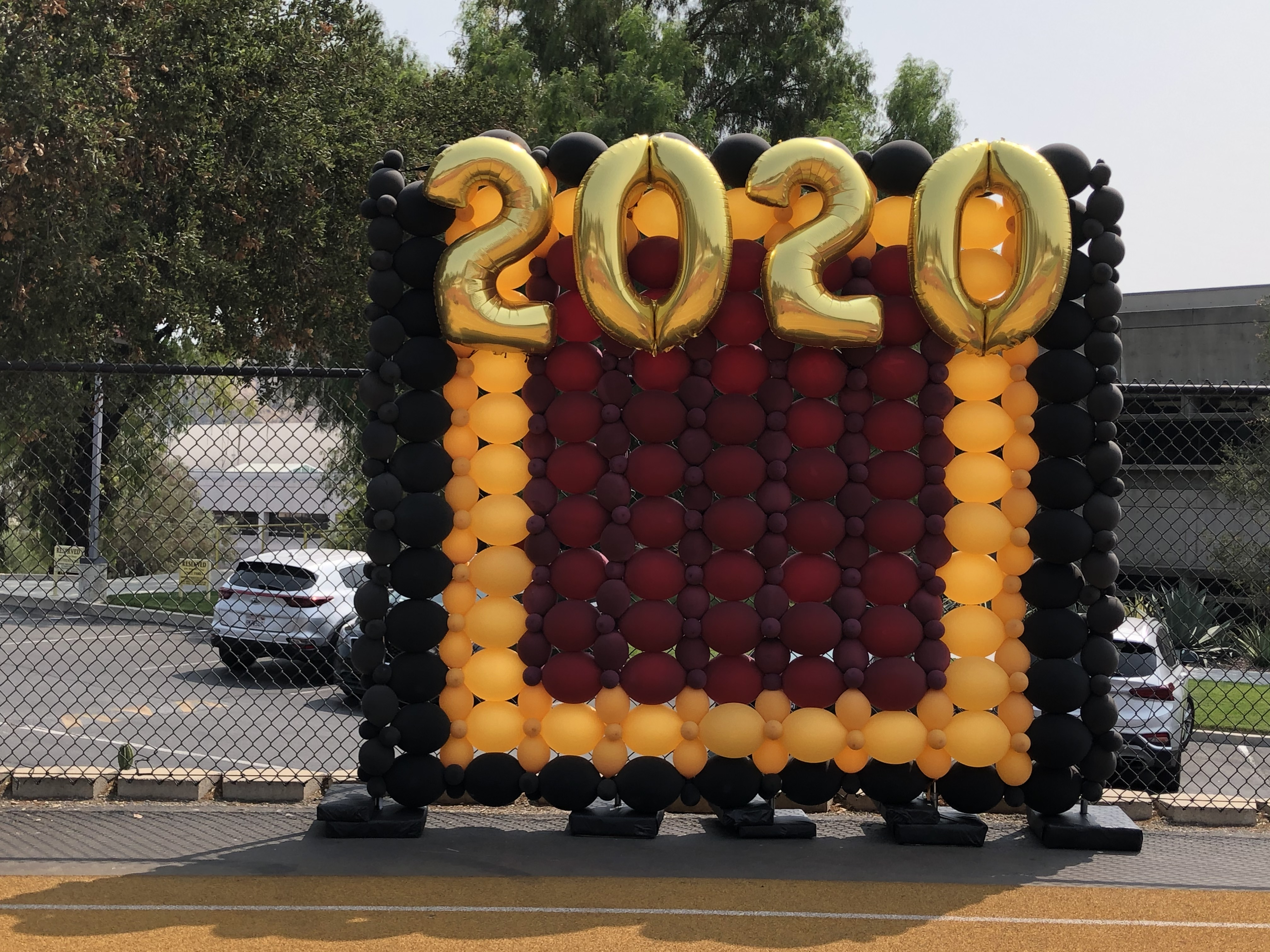 10' X 10' Balloon Backdrop