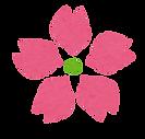 桜の花びら.png