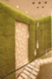 walls green view.jpg