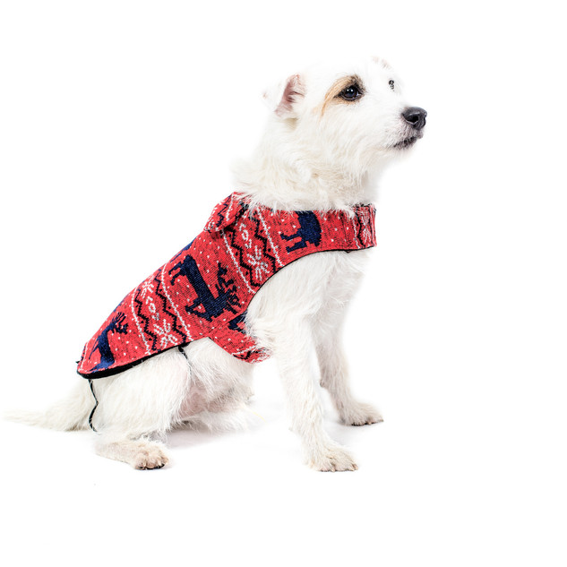 Cappotti per cani FUNKY DOG