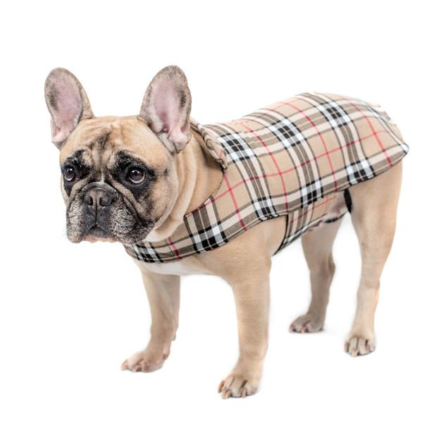 Cappotti per cani burberry