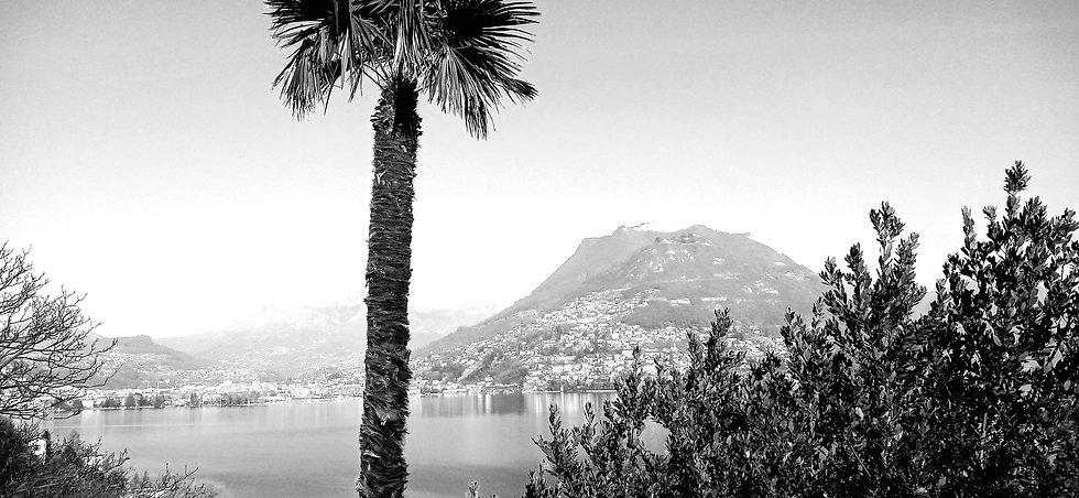 Ticino Lugano Company Domicile