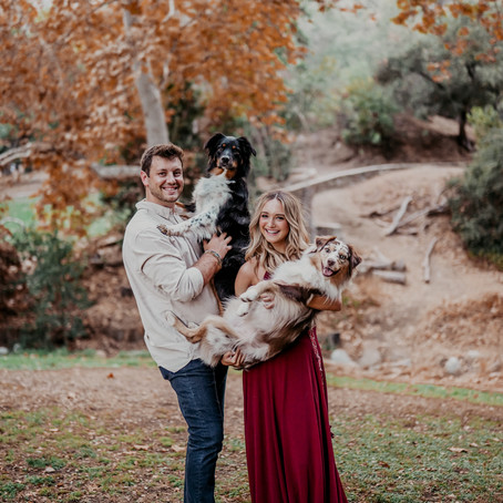Katie, Travis, Nala, and Josie Family Session