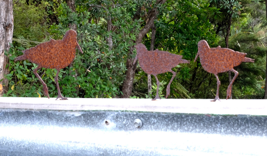 Oystercatchers - Sitting on the fence.