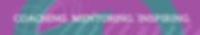 OV01_EBLAST_SUB_CMI_600.png