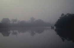 Mists of Amazon