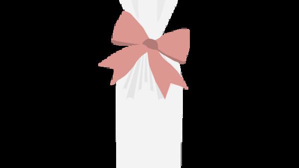 Clear Polypropylene Bag