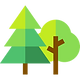 025-forest.png