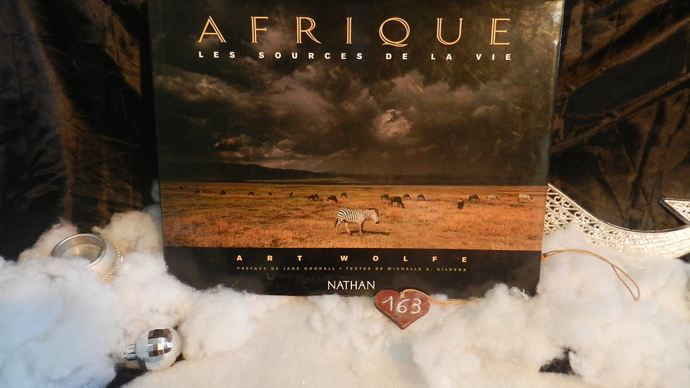 livre afrique les sources de la vie