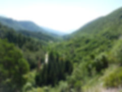 project-carpathian-balkan-day-8- (13).JP