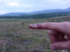 project-carpathian-balkan-day-6- (39).JP