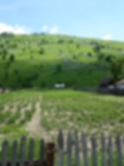 project-carpathian-balkan-day-4- (16).JP