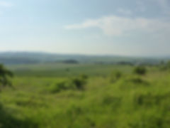 project-carpathian-balkan-day-6- (31).JP