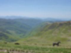 project-carpathian-balkan-day-3- (24).JP