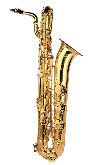 Forestone Baritone Saxophone Gold Lacquered