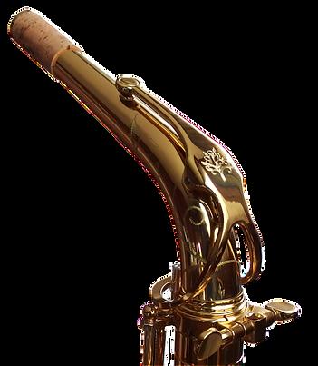 Forestone Lacquered Alto Saxophone Neck
